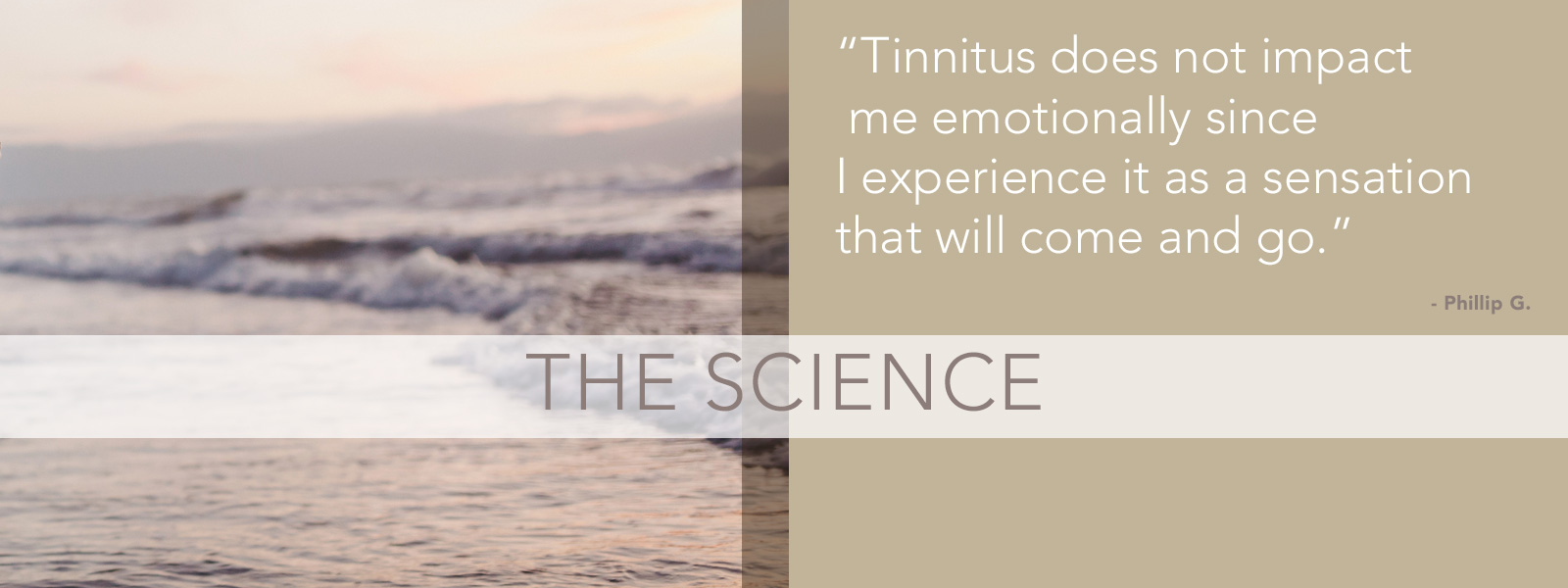Mindfulness-Based Tinnitus Stress Reduction